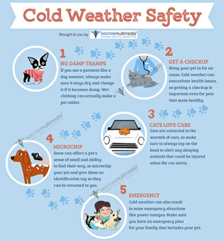 ColdWeather Safety