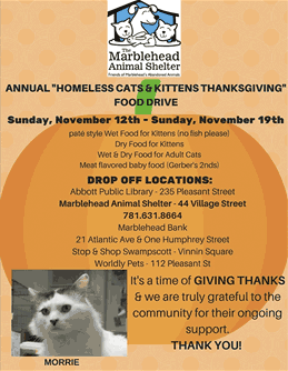 "Annual ""Homeless Cats & Kittens Thanksgiving"" Food Drive"